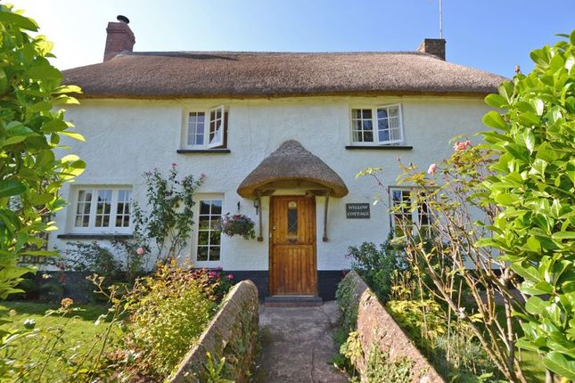 Thumbnail Detached house for sale in Ottery Street, Otterton, Budleigh Salterton