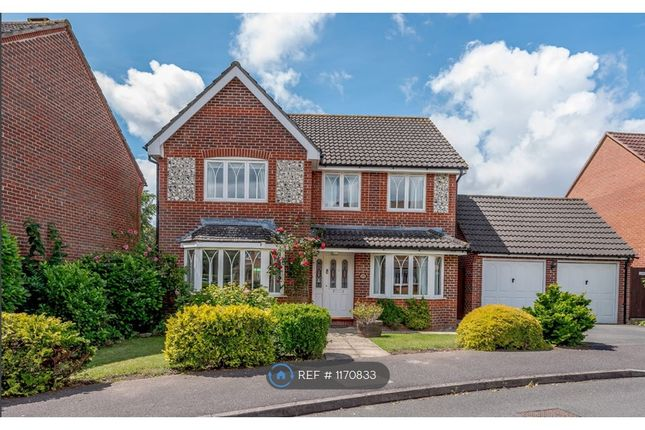 4 bed detached house to rent in Harebell Drive, Thatcham RG18