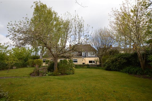 Thumbnail Link-detached house for sale in Copplestone, Crediton, Devon