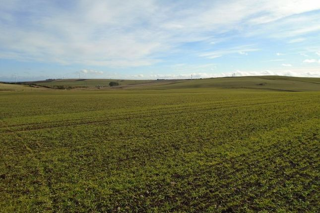Thumbnail Land for sale in Stonehaven, Aberdeenshire