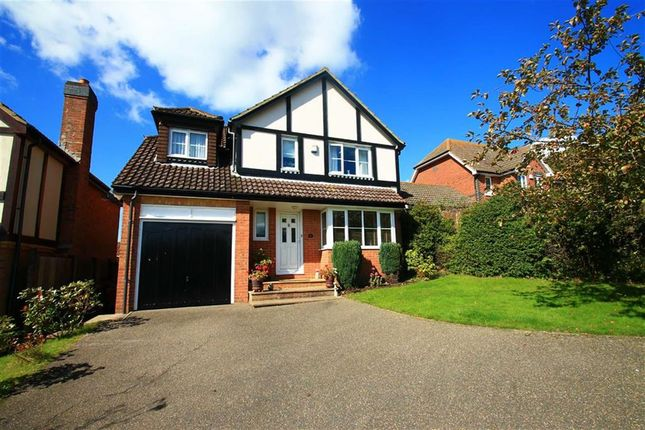 Thumbnail Detached house for sale in Harbour Way, St Leonards-On-Sea, East Sussex
