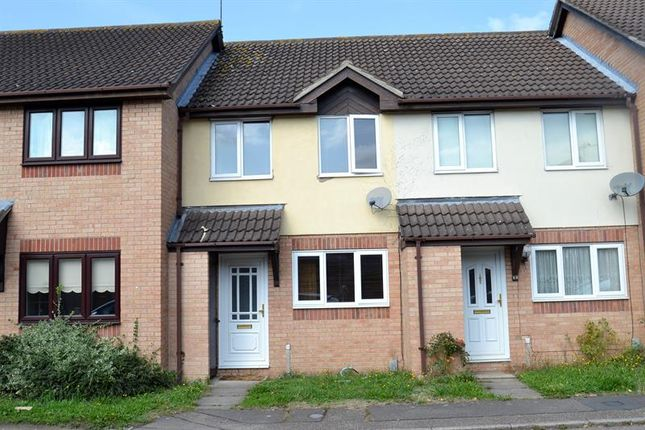 Thumbnail Terraced house for sale in Bignell Croft, Highwoods, Colchester