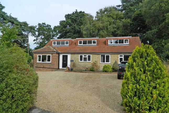 Thumbnail Detached house for sale in Westwood, 2 Pine Close, Midhurst