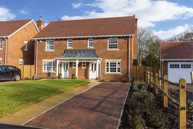 Thumbnail Semi-detached house for sale in Finches Close, Colden Common, Winchester, Hampshire