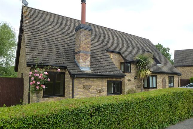 Thumbnail Property to rent in The Willows, Glinton, Peterborough
