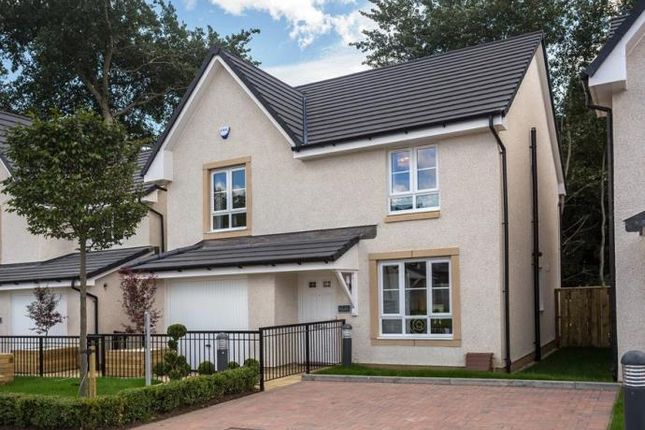Thumbnail Detached house to rent in Templegill Crescent, Wishaw