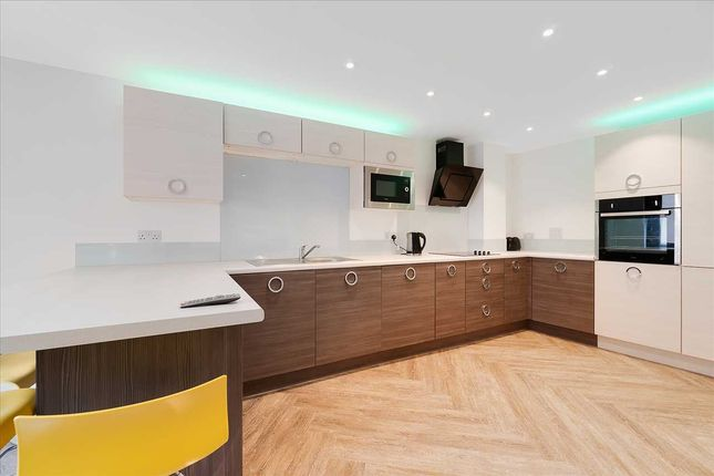 Thumbnail Flat to rent in Allendale Road, Mutley, Plymouth