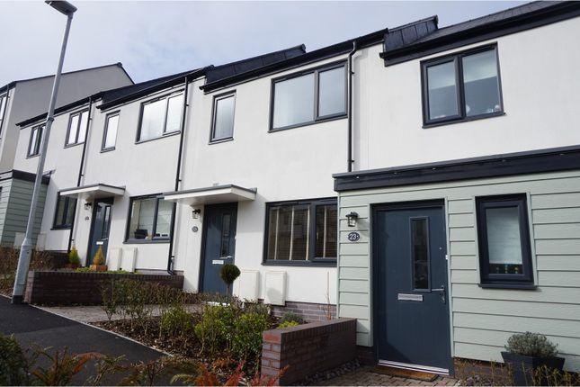 Thumbnail Terraced house for sale in Meadowsweet Lane, Paignton