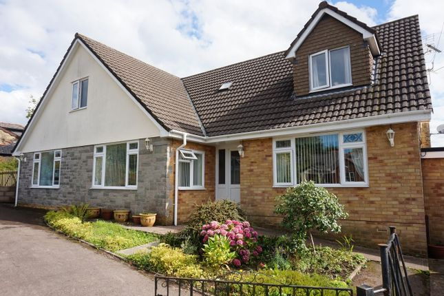 Thumbnail Detached house for sale in New Road, Bream
