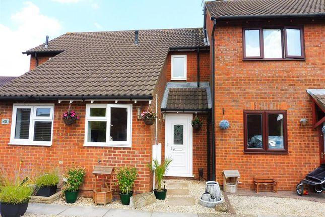 Thumbnail Terraced house for sale in Sandpiper Bridge, Swindon