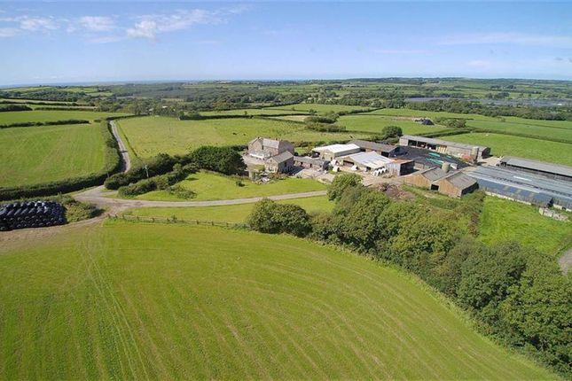 Thumbnail Farm for sale in Bridgerule, Holsworthy, Devon