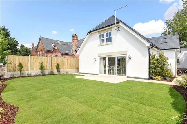 Thumbnail Detached house for sale in Portman Road, Pimperne, Blandford Forum