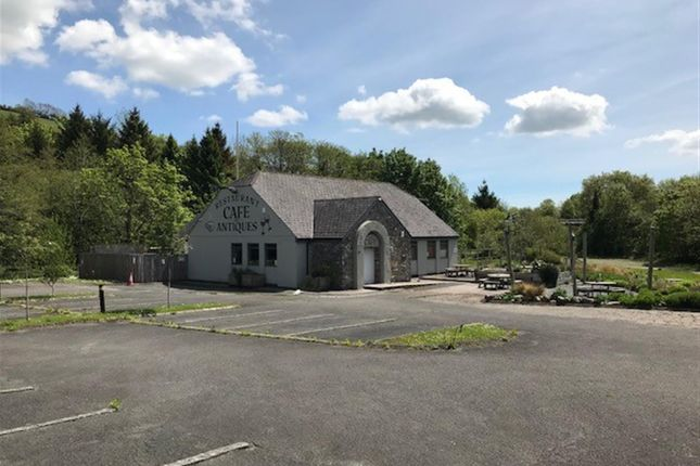 Thumbnail Commercial property for sale in Buckfastleigh