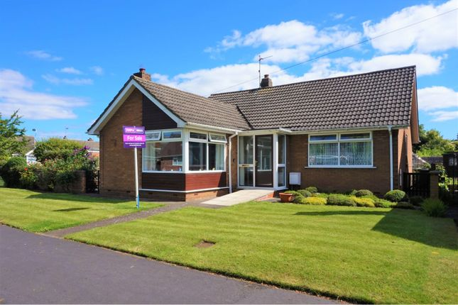 Thumbnail Detached bungalow for sale in Loatley Green, Cottingham