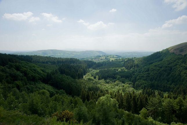 Photo of Afan Valley, Afan Valley CF34