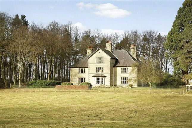 Thumbnail Detached house for sale in West Grange Estate, Morpeth, Northumberland