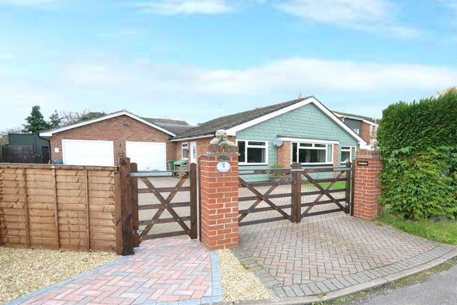 Thumbnail Detached bungalow for sale in Lyde Close, Oakley, Basingstoke