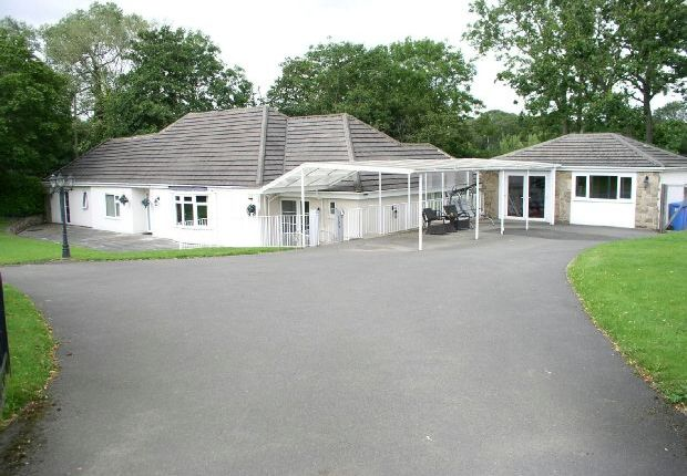 Thumbnail Bungalow for sale in Derby Road, Butterley, Ripley