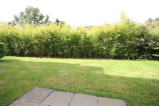 Garden of Harford Court, Derriford, Plymouth PL6