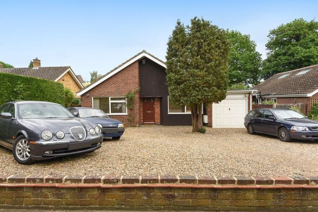 Thumbnail Detached bungalow for sale in Knaphill, Woking