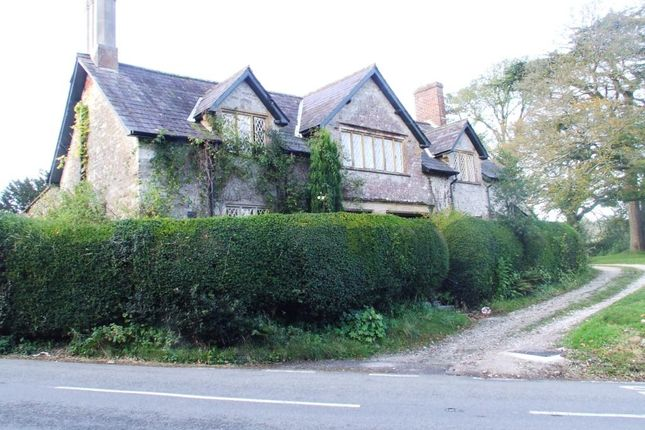 Thumbnail Semi-detached house to rent in Minterne Magna, Dorchester, Dorset