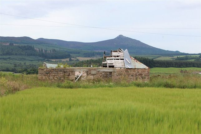 Thumbnail Land for sale in Upper Coullie Lot 3, Blairdaff, Inverurie, Aberdeenshire