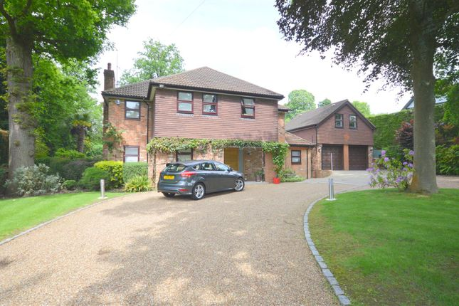 Thumbnail Detached house to rent in Beech Drive, Kingswood, Tadworth