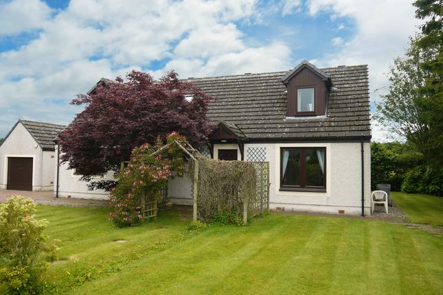 Thumbnail Detached bungalow for sale in Milton Lane, Finavon, Forfar, Angus