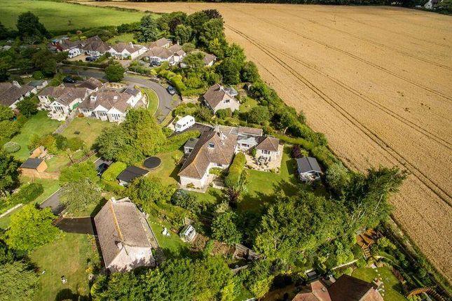 Thumbnail Detached house for sale in Martel Close, Broadmayne, Dorchester