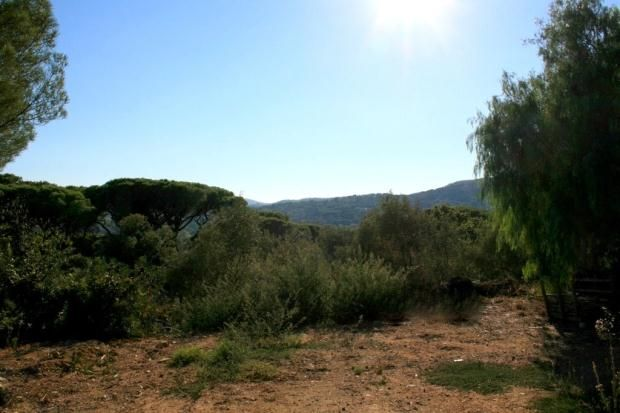 Thumbnail Land for sale in Saint-Tropez, Var Coast, French Riviera, 83990