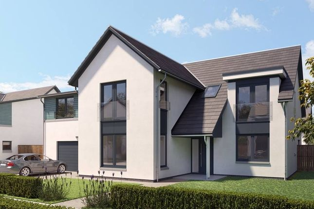 "Thumbnail Detached house for sale in ""The Radley"" at Bridge Of Allan, Stirling"