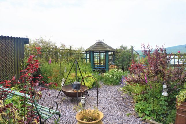 Garden of Rhydlydan, Betws-Y-Coed LL24