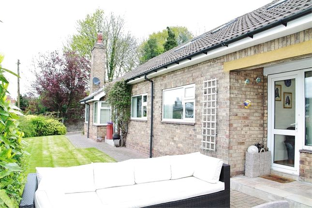 Thumbnail Detached house for sale in Union Street, Harthill, Sheffield, South Yorkshire