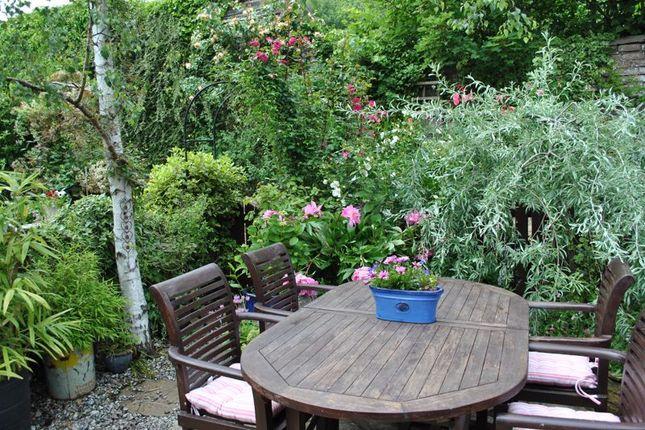 Part Of The Rear Garden