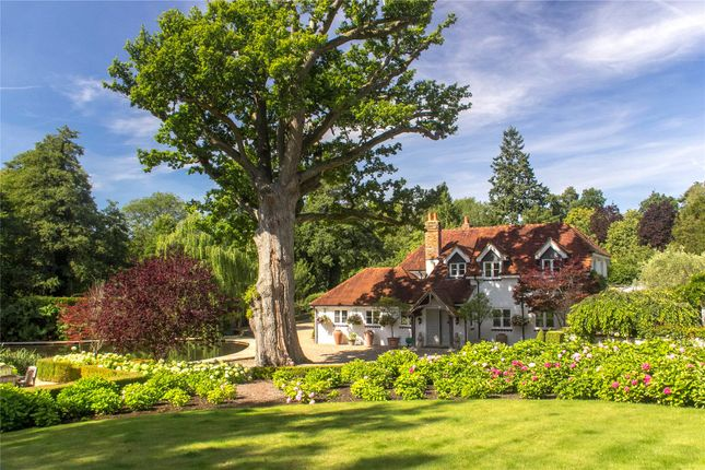 Thumbnail Detached house for sale in Wonersh, Guildford, Surrey