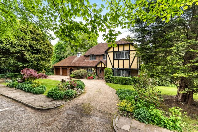 Thumbnail Detached house for sale in Lime Tree Walk, Bushey Heath, Hertfordshire