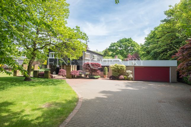 Thumbnail Detached house for sale in The Ridge, Little Baddow, Chelmsford