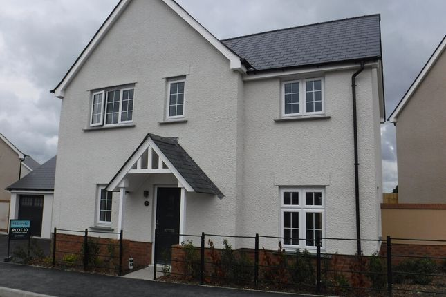 Thumbnail Detached house to rent in Cowslip Avenue, Tavistock
