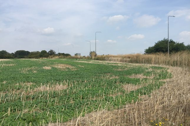 Thumbnail Land for sale in Marshfoot Road, Grays