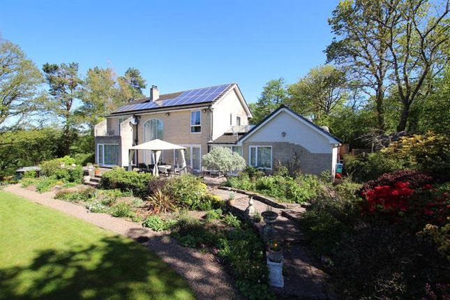 Thumbnail Detached house for sale in The Groesfford, Groesfford, Brecon