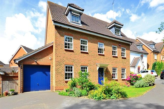 Thumbnail Detached house for sale in Myrtle Green, Ashford