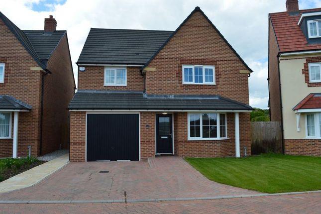 Thumbnail Detached house to rent in Hazel Way, Edleston, Nantwich