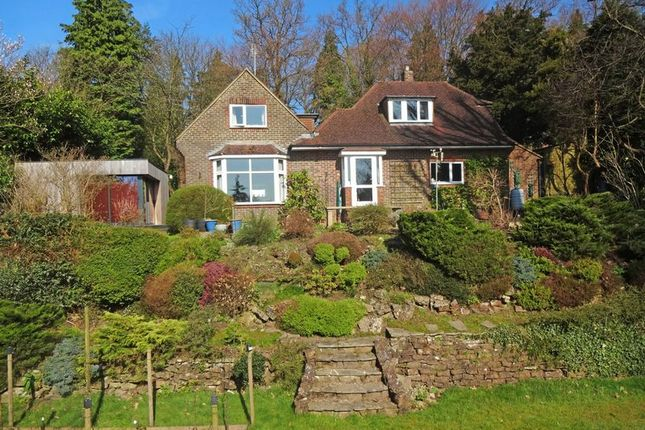 Thumbnail Detached house for sale in Portsmouth Road, Hindhead