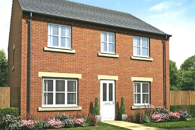 "Thumbnail Detached house for sale in ""The Chedworth Special"" at Sterling Way, Shildon"