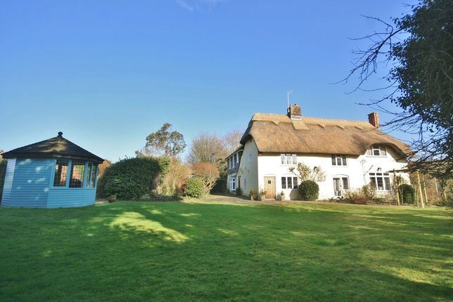 Thumbnail Cottage for sale in Anmore Road, Denmead, Waterlooville