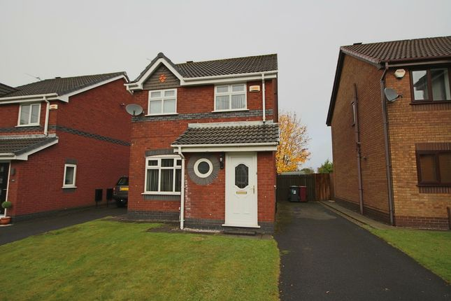 Thumbnail Detached house to rent in Dale View, Blackburn
