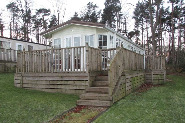 Thumbnail Property for sale in Causey Hill Holiday Park, Hexham, Northumberland