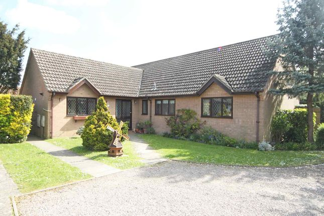 Thumbnail Detached bungalow to rent in Market Street, Fordham