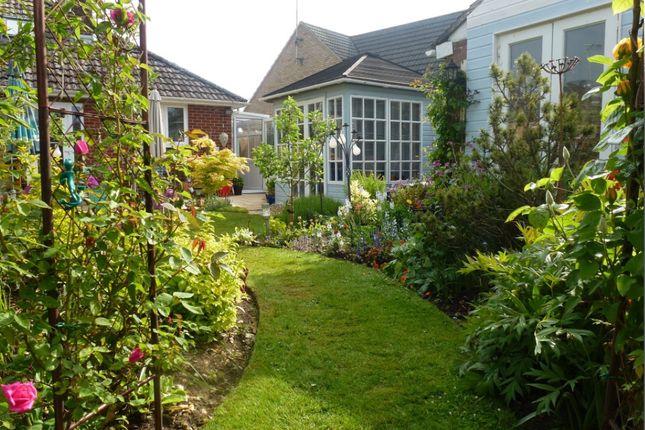 Thumbnail Semi-detached bungalow for sale in Moot Gardens, Downton, Salisbury