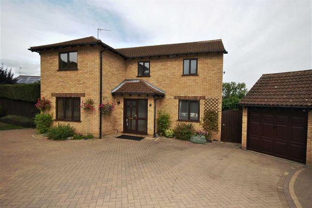 Thumbnail Detached house for sale in Russet Drive, Little Billing, Northampton
